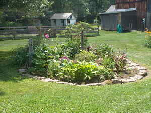 Flowerbed Overall View Summer 2014
